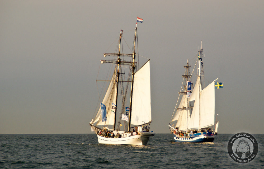 Traditionssegler in voller Fahrt vor Warnemünde